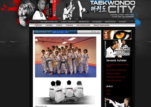 Taekwondo city